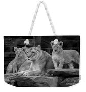 Lioness And Cubs Weekender Tote Bag