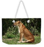 Lioness On The Masai Mara  Weekender Tote Bag