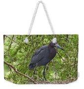 Little Blue Heron Nesting Texas Weekender Tote Bag
