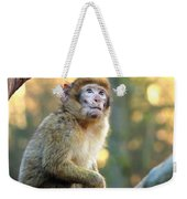 Little Monkey Weekender Tote Bag