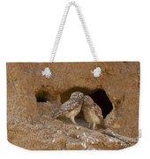 Little Owl Athene Noctua Weekender Tote Bag