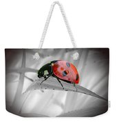 Lone Ladybug Weekender Tote Bag