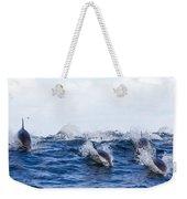 Long-beaked Common Dolphins Weekender Tote Bag