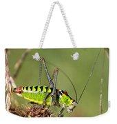 Long-horned Katydid Tettigonid Weekender Tote Bag
