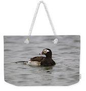 Longtailed Duck Weekender Tote Bag