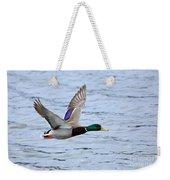 Mallard Duck In Flight Weekender Tote Bag