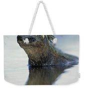 Marine Iguana Galapagos Islands Weekender Tote Bag