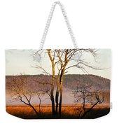 Marsh Tree Reflections Weekender Tote Bag