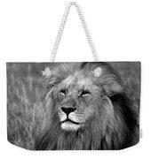 Masai Mara Lion  Weekender Tote Bag