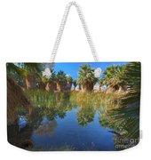 Mccallum Pond - Coachella Valley  Weekender Tote Bag