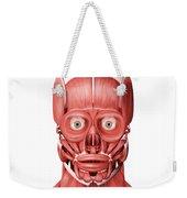 Medical Illustration Of Male Facial Weekender Tote Bag