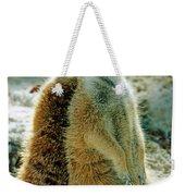 Meerkats Weekender Tote Bag