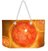 Microscopic View Of A Blastula Weekender Tote Bag
