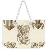 Molluscs Or Soft Worms Weekender Tote Bag