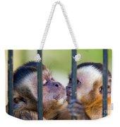 Monkey Species Cebus Apella Behind Bars Weekender Tote Bag