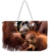 Mother And Baby Orangutan Borneo Weekender Tote Bag