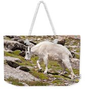 Mountain Goat On Mount Evans Weekender Tote Bag