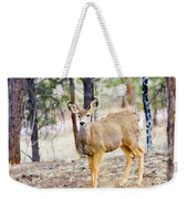 Mule Deer Does Weekender Tote Bag