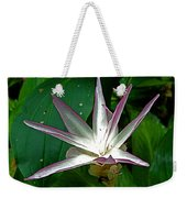 Narcissus In Jim Thompson House And Museum In Bangkok-thailand. Weekender Tote Bag
