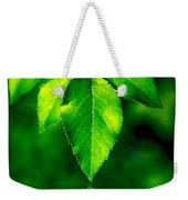 Natural Leaves Background Weekender Tote Bag