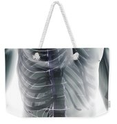 Nerves Of The Trunk Weekender Tote Bag