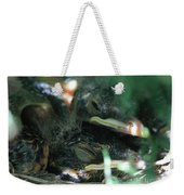 Nest Of American Robins Weekender Tote Bag