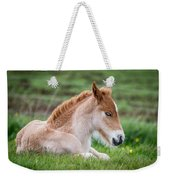 New Born Foal, Iceland Purebred Weekender Tote Bag