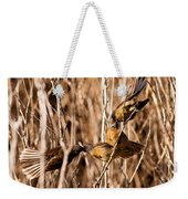 New Zealand Fantail Chicks Being Fed By Parents Weekender Tote Bag