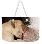 Newborn Labrador Puppy Suckling Weekender Tote Bag