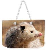 North American Opossum In Winter Weekender Tote Bag