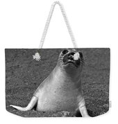 Northern Elephant Seal Weaner Weekender Tote Bag