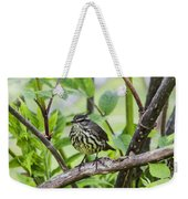 Northern Water Thrush Weekender Tote Bag