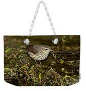 Northern Waterthrush Weekender Tote Bag