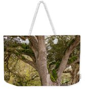 Oak Alley Backyard Weekender Tote Bag