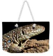 Ocellated Lizard Timon Lepidus Weekender Tote Bag