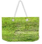 Old Green Grass Weekender Tote Bag