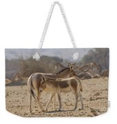 Onager Equus Hemionus 1 Weekender Tote Bag