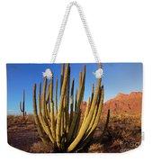 Organ Pipe Cactus Natl Monument Weekender Tote Bag