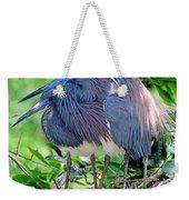 Pair Of Tricolored Heron At Nest Weekender Tote Bag