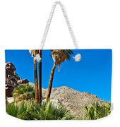 Palm Oasis On Borrego Palm Canyon Trail In Anza-borrego Desert Sp-ca Weekender Tote Bag