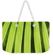 Palm Tree Leaf Weekender Tote Bag by Elena Elisseeva
