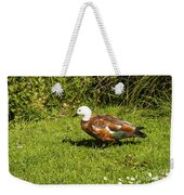 Female Paradise Duck Weekender Tote Bag