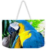 Blue Yellow Macaw. Parrot. Photo Of Bird Weekender Tote Bag