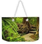 Path In Temperate Rainforest Weekender Tote Bag by Elena Elisseeva