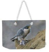 Peregrine Eating Pigeon Weekender Tote Bag