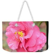 Pink Camellia Closeup With Light Weekender Tote Bag