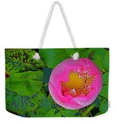 Pink Lotus In Backyard Of Home In Bangkok-thailand. Weekender Tote Bag