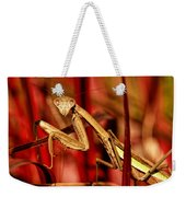 Praying Mantis  Weekender Tote Bag