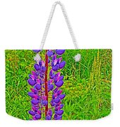 Purple Lupine On Campobello Island-nb Weekender Tote Bag
