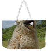 Pyrenean Sheepdog Weekender Tote Bag